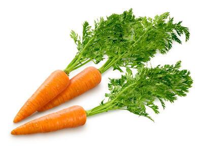 Листья моркови