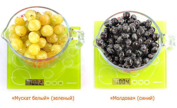 """сорта винограда - """"Мускат белый"""" и """"Молдова"""" (синий)."""